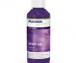 Plagron Start Up, 100ml